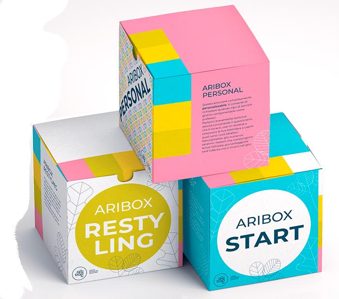 Brand Identity professionale - Aribox